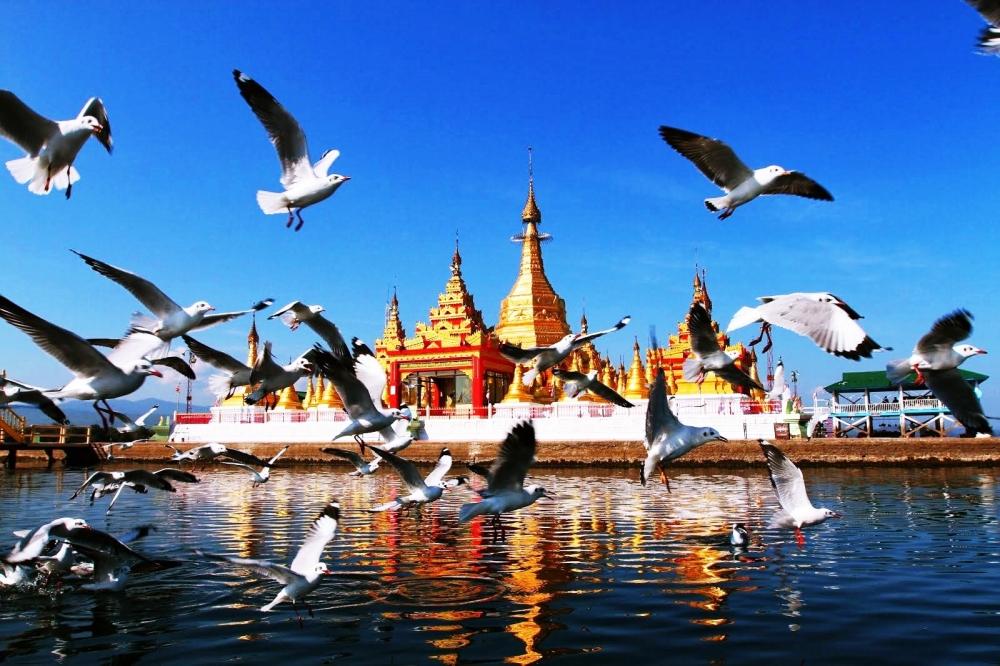 our-famous-shwe-myinzu-pagoda-inndawgyi-lake-kachin-state-2